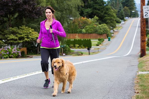 4 Tips for Peak Pet Fitness