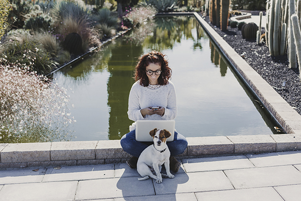 Create a Pet-Friendly Workplace