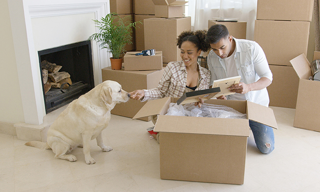 5 Tips for Moving with Your Pet